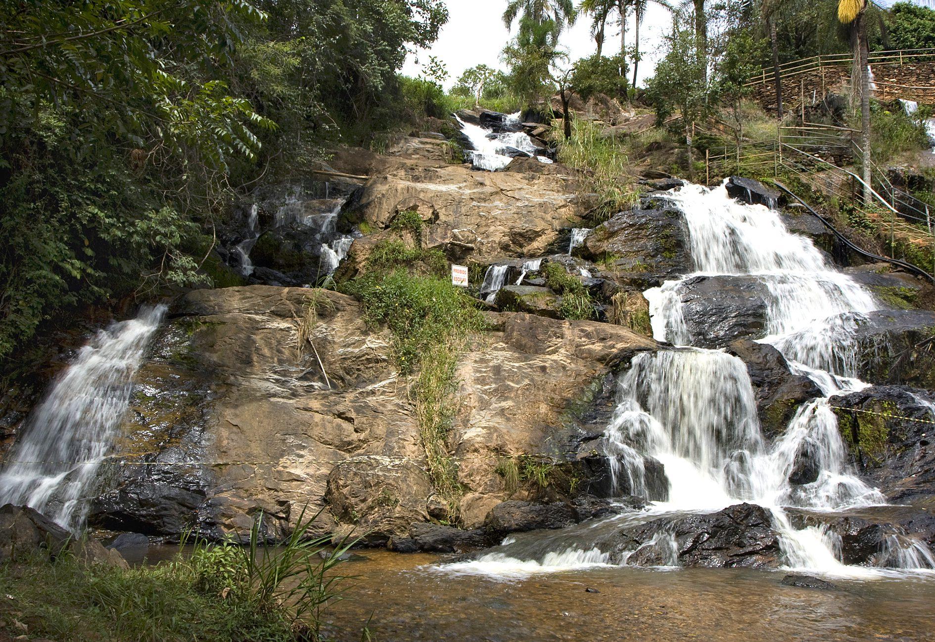 MEIO AMBIENTE: STF deve concluir julgamento do Código Florestal nesta semana