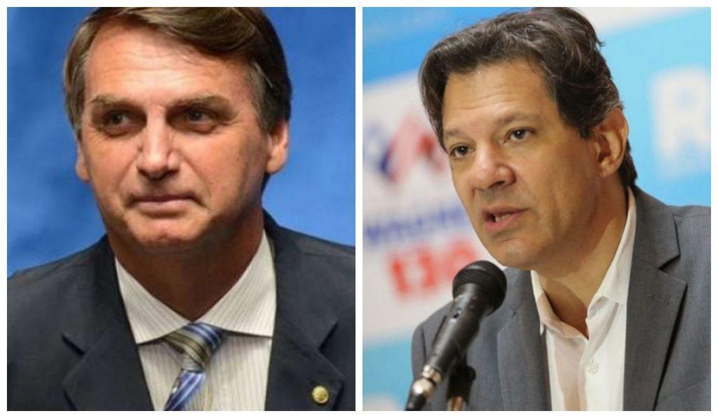 Bolsonaro e Haddad agregador