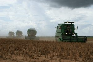 agricultura agrotóxicos soja campo agronegócio