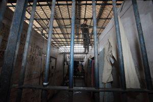 execução acordo de não persecução
